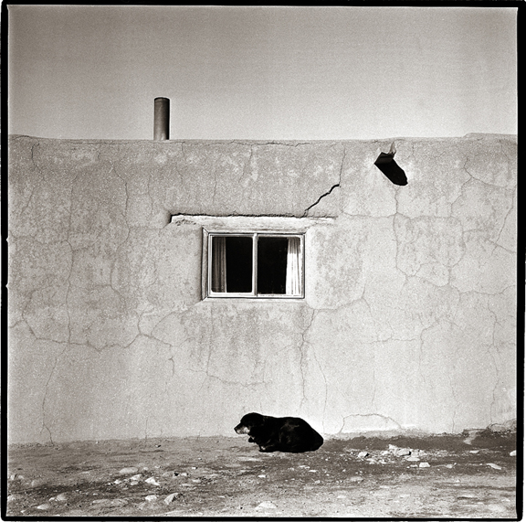 Taos Pueblo Dog - Black and White Photographs